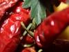degustazione-slow-food-pomigliano-jazz-festival-chef-a-casa-vostra-michela-iaccarino-182