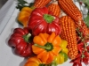 degustazione-slow-food-pomigliano-jazz-festival-chef-a-casa-vostra-michela-iaccarino-27