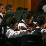 Orchestra Sanitansamble
